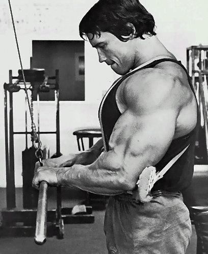 arnold-schwarzenegger-triceps-2