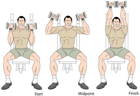 arnoldove-tlaky-cviky-na-ramena