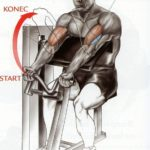 Bicepsový zdvih na stroji