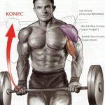 Bicepsový zdvih s veľkou činkou