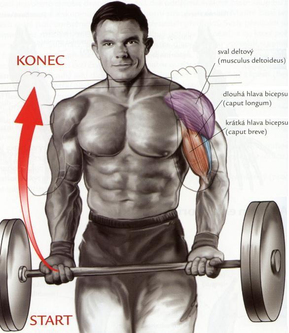 bicepsovy-zdvih-s-velkou-cinkou