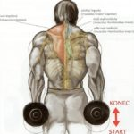 Krčenie ramien s jednoručkami
