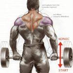 Krčenie ramien s obojručnou činkou