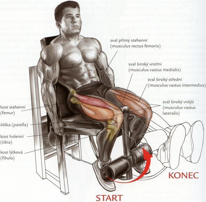 predkopavanie-v-sede-na-stroji-cviky-na-nohy