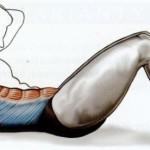 Sed ľah na zemi (brušáky)