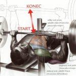 Tlak na rovnej lavičke s veľkou činkou (Bench press)