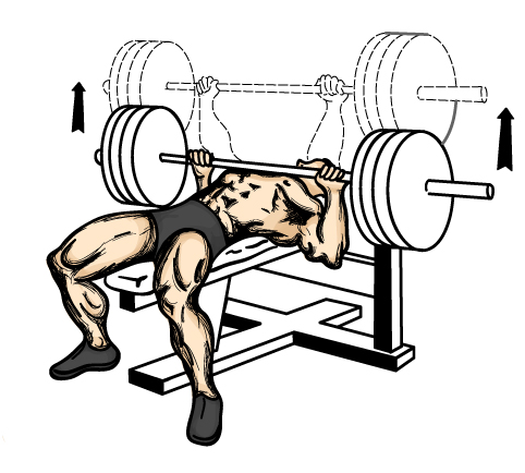 tlak-na-lavicke-s-velkou-cinkou-bench-press-silueta