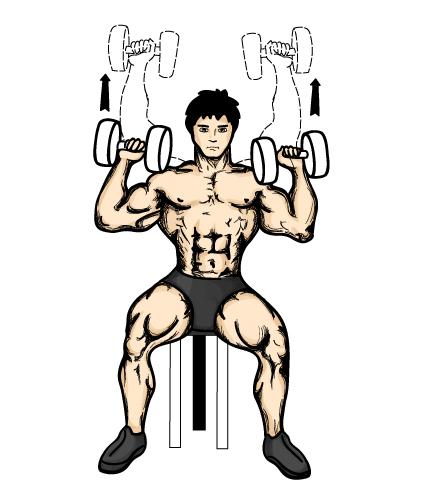 tlaky-na-ramena-s-jednoruckami-v-sede-cviky-na-ramena-2