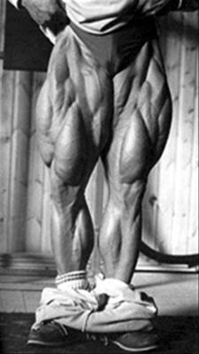 tom-platz-stvorhlavy-stehenny-sval-kvadriceps