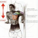 Tricepsové kliky na bradlách