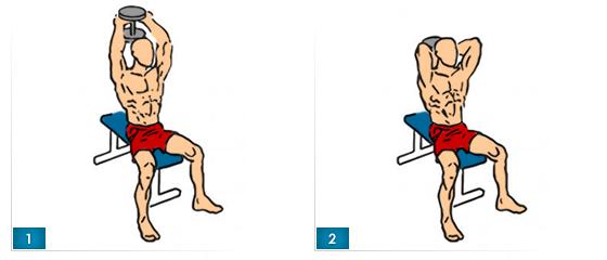 tricepsove-tlaky-s-jednoruckou-v-sede-francuzsky-tlak-v-sede