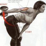 Tricepsový kick back v predklone
