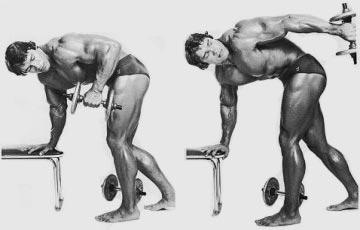 tricepsovy-kick-back-v-predklone-arnold-schwarzenegger