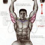 Tricepsový tlak s veľkou činkou v sede (Francúzsky tlak)
