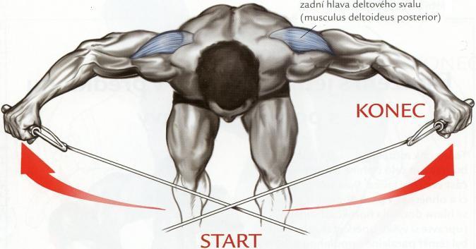 upazovanie-s-kladkami-predklone-cviky-na-ramena